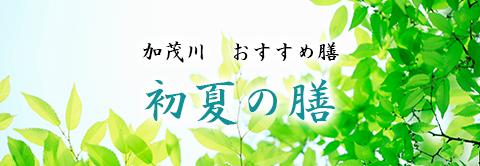 加茂川 おすすめ膳『初夏の膳』
