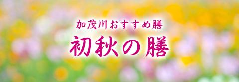 加茂川おおすすめ膳「初秋の膳」